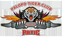 PATIC Palopo